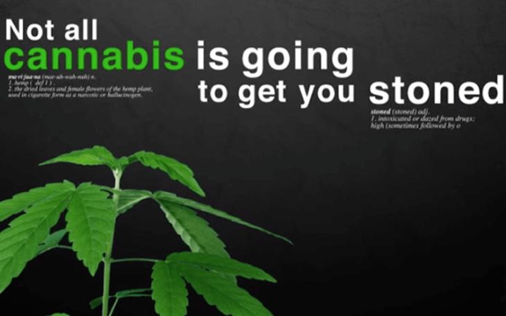 Vermont becomes ninth state to legislate legal marijuana