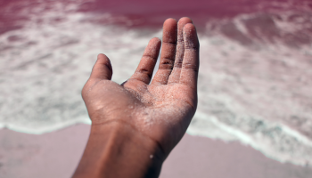 Study shows more than 10 percent have cocaine on their hands