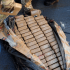 Florida coast guard nets 6 tons of cocaine in massive drug bust at Port Everglades